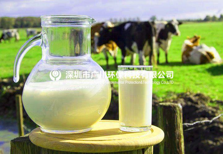 乳制品行业反渗透纯水设备